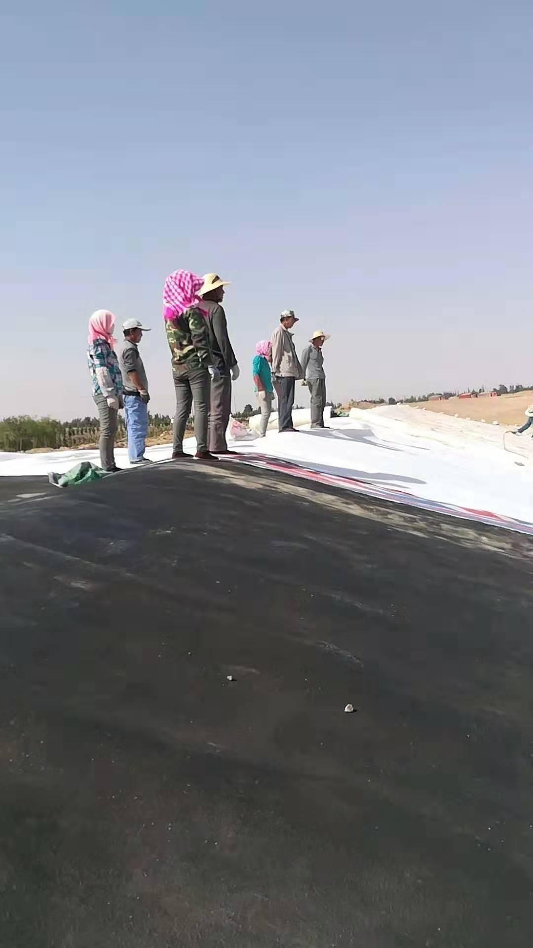 「土工膜」HDPE土工膜现场铺设图